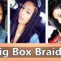 Big-Box-Braids-Hairstyles-for-Black-Women-Large-box-braids-on-Natural-hair
