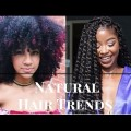 2017-Spring-Summer-Natural-Hairstyles-for-Black-African-American-Women