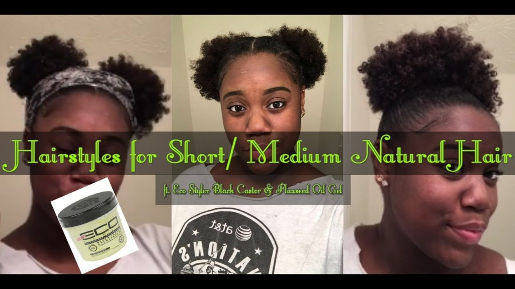 10 Cute Hairstyles For Short Medium Natural Hair Ft Eco Styler