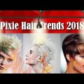 20-Top-Pixie-Cut-2018s-Pixie-Cuts-Hairstyles-Short-Hair-Trends