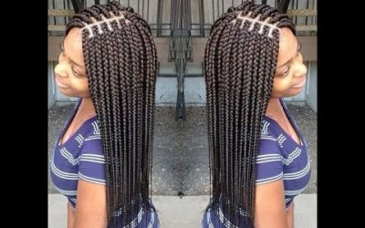 Black-Braids-Hairstyles-for-Women-Cute-Braids-Ideas-for-Your-Next-Hairdo